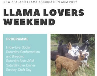 Llama lovers week-end