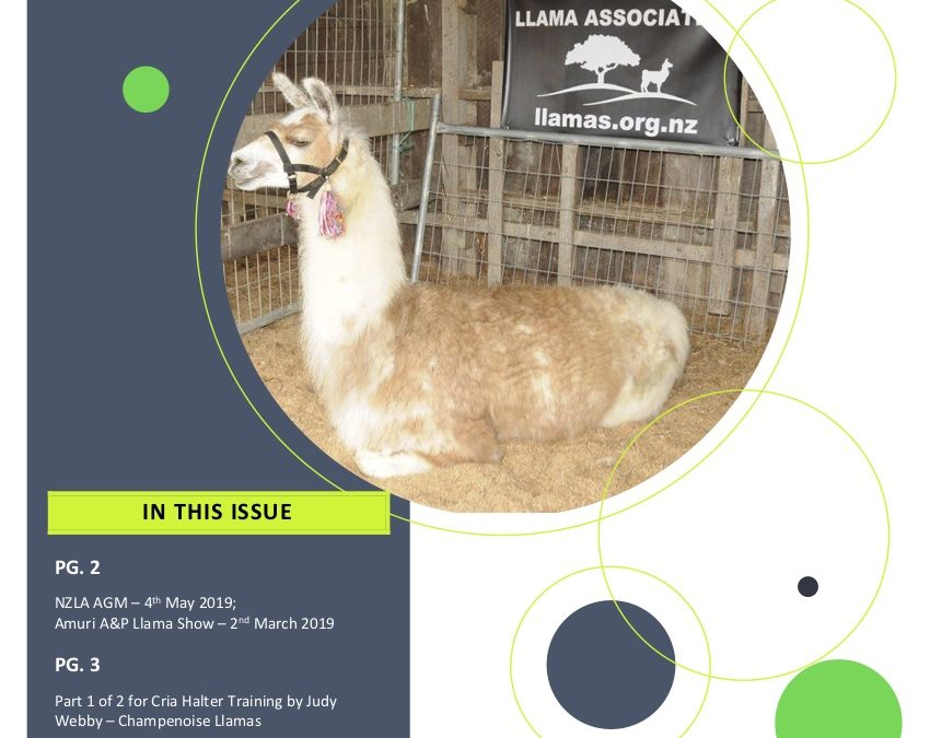 Lama Glama Gazette: Issue 1 Vol 2 2019