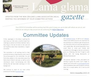 Lama Glama Gazette: Issue 3 Vol 1 2018