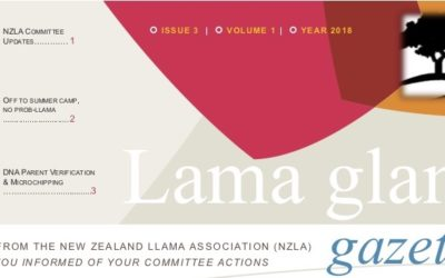 Lama Glama Gazette Issue 3 Vol 1 2018