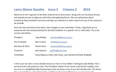 Lama Glama Gazette: Issue 2 Vol 2 2019
